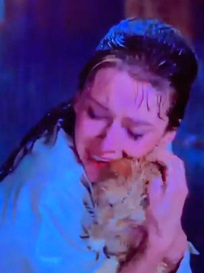 雨の中猫を抱くホリー