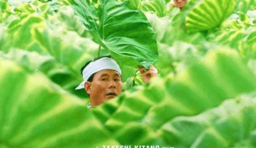 北野武監督映画「菊次郎の夏」あらすじと感想